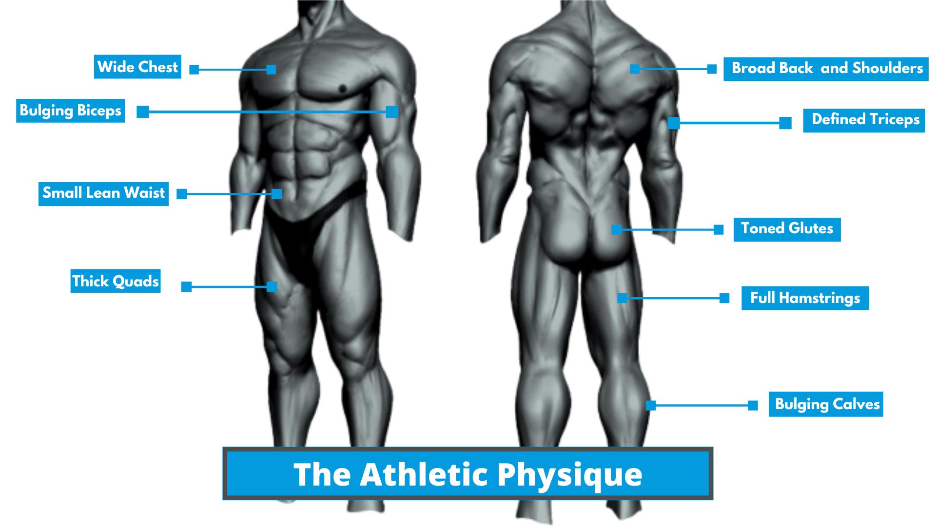 Athletic Body Body Description