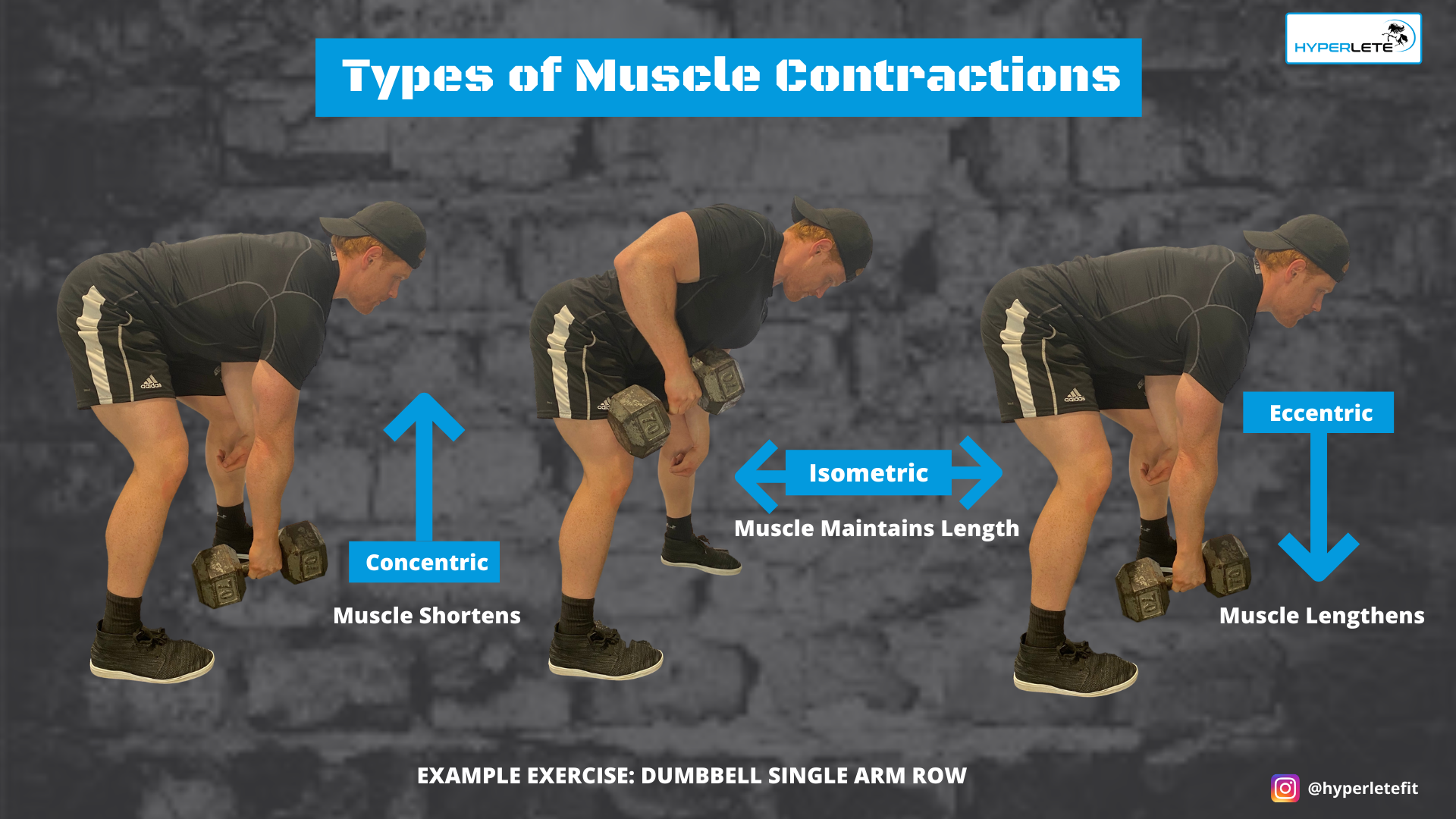 Training Program Basics: Types of Muscle Contractions